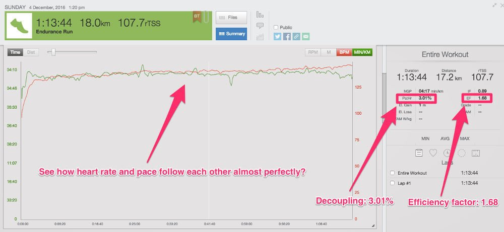 Data driven triathlon training